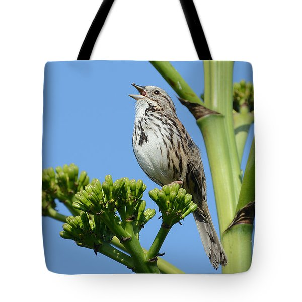 Tote Bag featuring the photograph Sing A Song by Fraida Gutovich