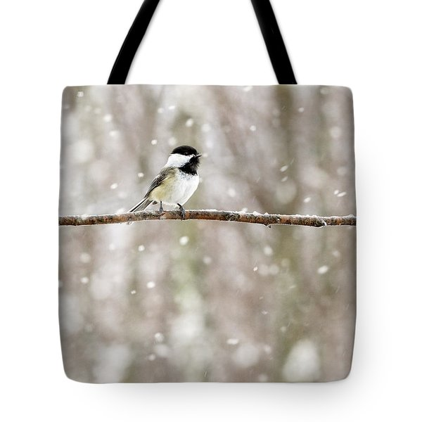 Sing Chickadee Sing Tote Bag by Angie Rea