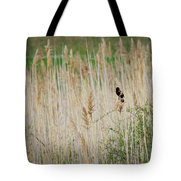 Tote Bag featuring the photograph Sing For Spring by Bill Wakeley
