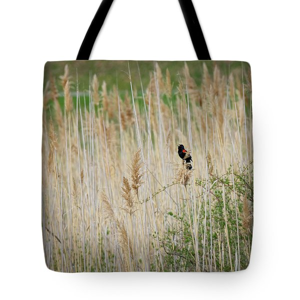 Tote Bag featuring the photograph Sing For Spring Square by Bill Wakeley