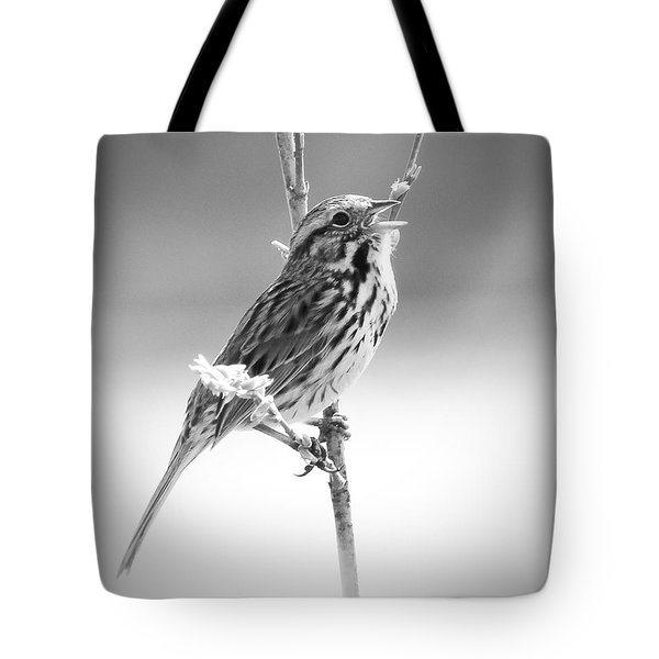 Sing Me A Song Tote Bag by Anita Oakley