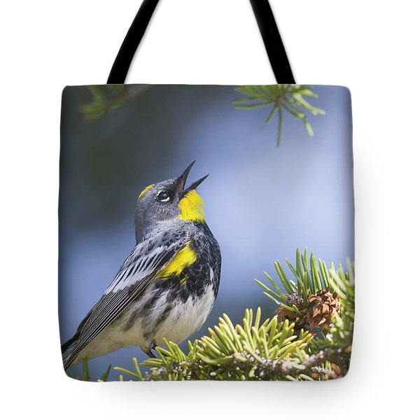 Singing Audubon's Warbler Tote Bag