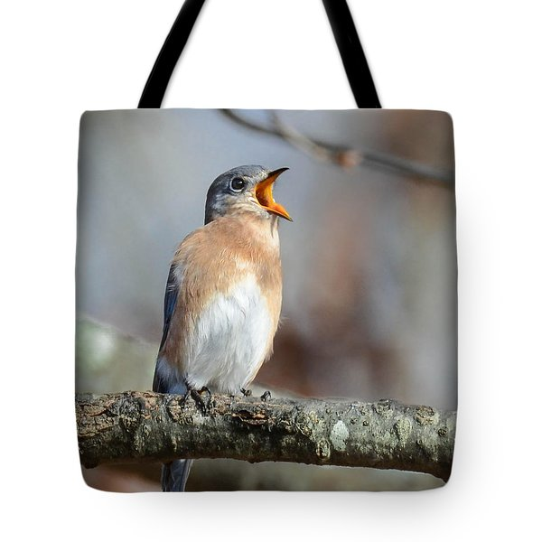 Singing This Song For You Tote Bag by Amy Porter
