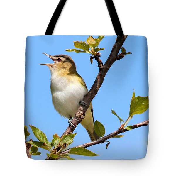 Singing Vireo Tote Bag