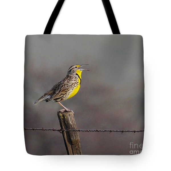 Tote Bag featuring the photograph Singing Warbler by Debby Pueschel