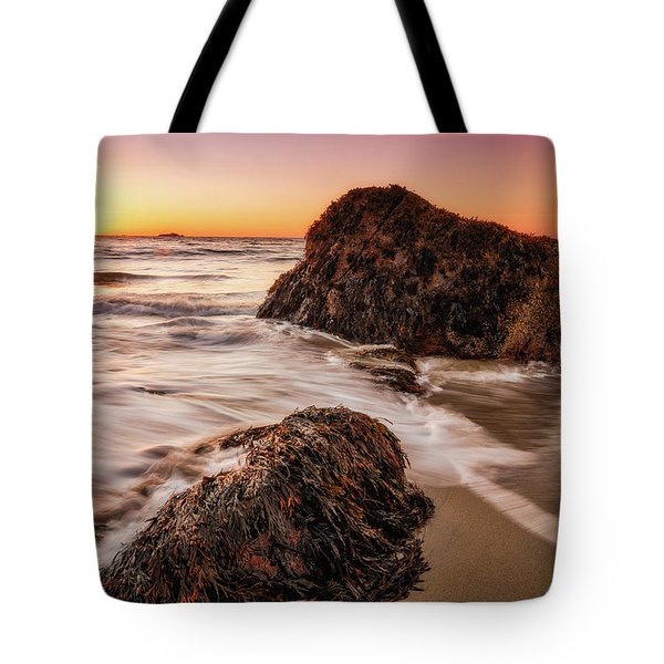 Tote Bag featuring the photograph Singing Water, Singing Beach by Michael Hubley