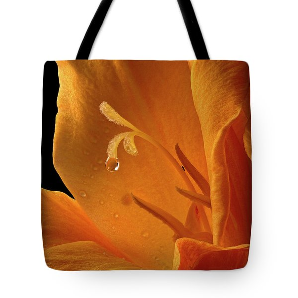 Tote Bag featuring the photograph Single Drop by Jean Noren