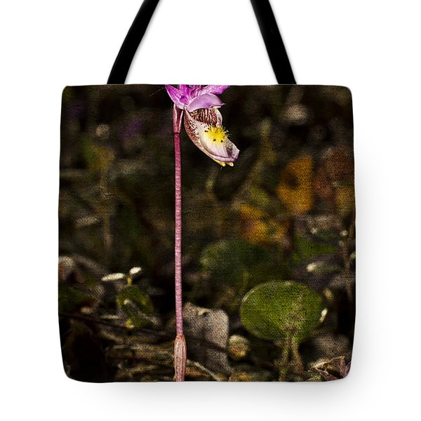 Single Fairy Slipper Tote Bag