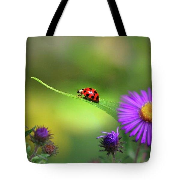 Single In Search Tote Bag by Christina Rollo