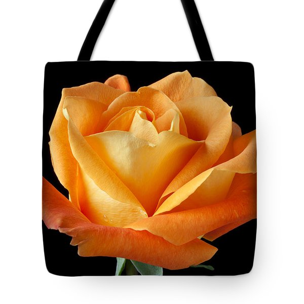 Single Orange Rose Tote Bag by Garry Gay