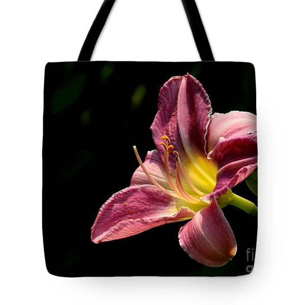 Tote Bag featuring the photograph Single Pink Day Lily by Kenny Glotfelty