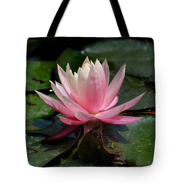 Single Pink Water Lily Tote Bag