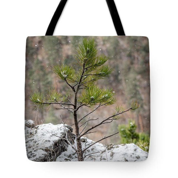 Single Snowy Pine Tote Bag
