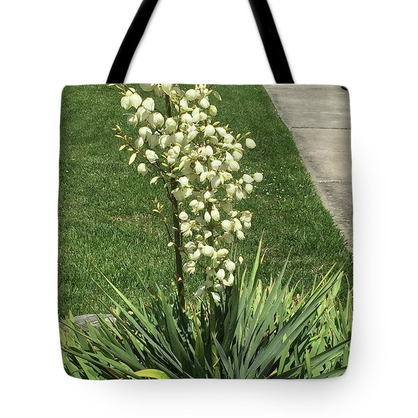 Tote Bag featuring the photograph Single Strand White Flower Nature Photography Birthday Christmas Holidays Festivals Mom Dad Sister  by Navin Joshi