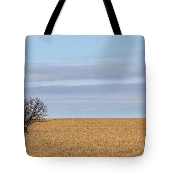 Single Tree In Large Field With Cloudy Skies Tote Bag
