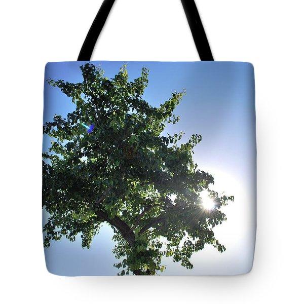 Single Tree - Sun And Blue Sky Tote Bag by Matt Harang