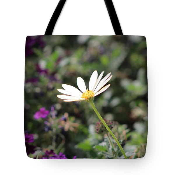 Single White Daisy On Purple Tote Bag by Colleen Cornelius