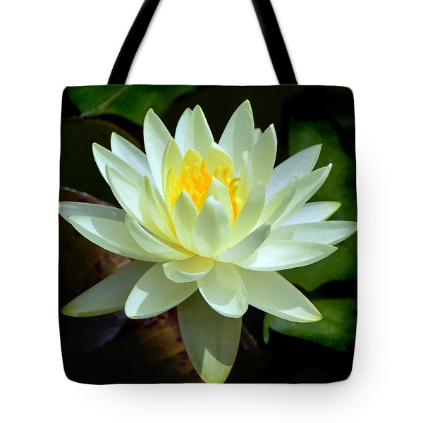 Single Yellow Water Lily Tote Bag