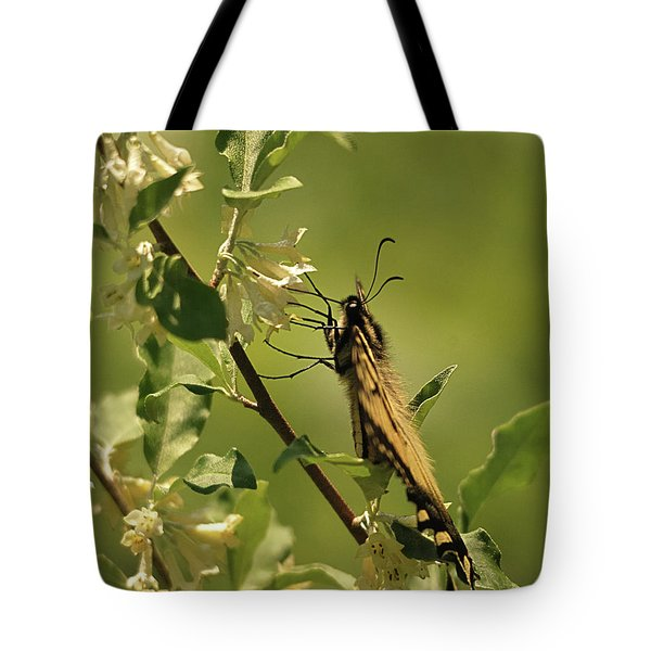 Tote Bag featuring the photograph Sipping In The Shade by Susan Capuano