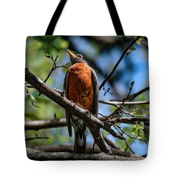 Sir Robin Tote Bag