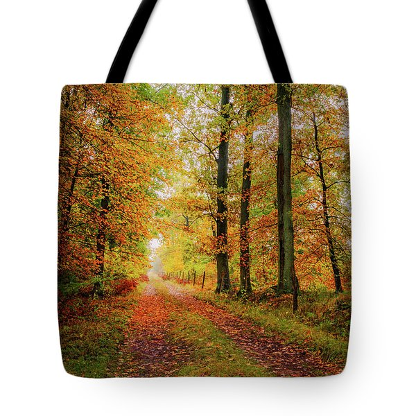 Tote Bag featuring the photograph Site 6 by Dmytro Korol