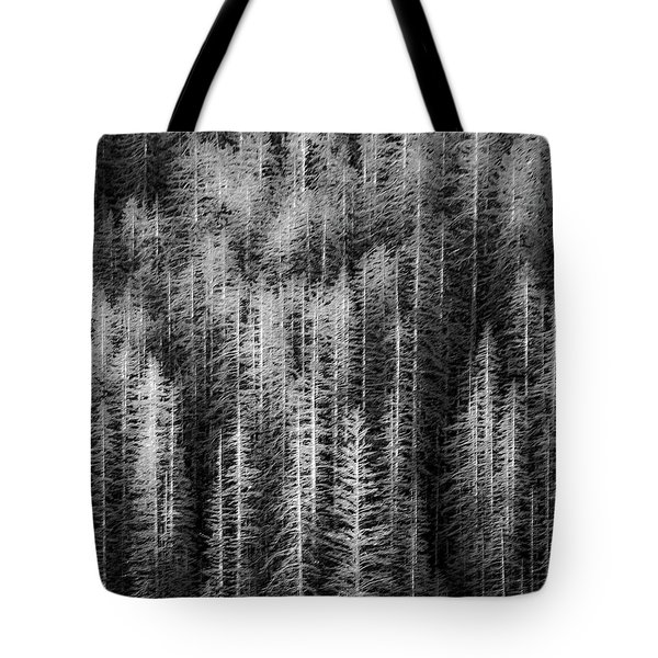 Sitka Abstraction Tote Bag