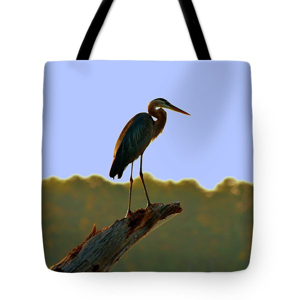 Tote Bag featuring the photograph Sitting High On The Log by Lisa Wooten