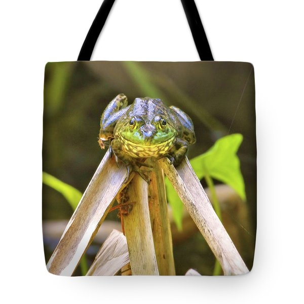 Sitting On Top Of The World Tote Bag