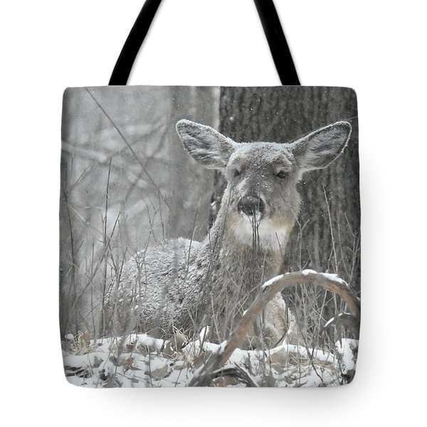 Tote Bag featuring the photograph Sitting Out The Storm by Michael Peychich