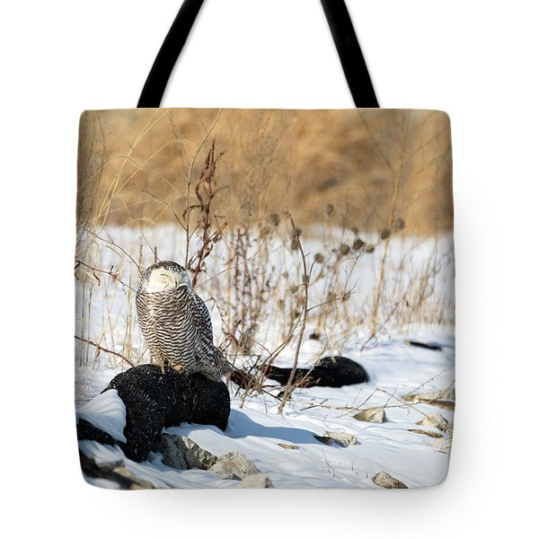 Sitting Snowy Tote Bag