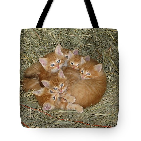 Six Kittens Tote Bag