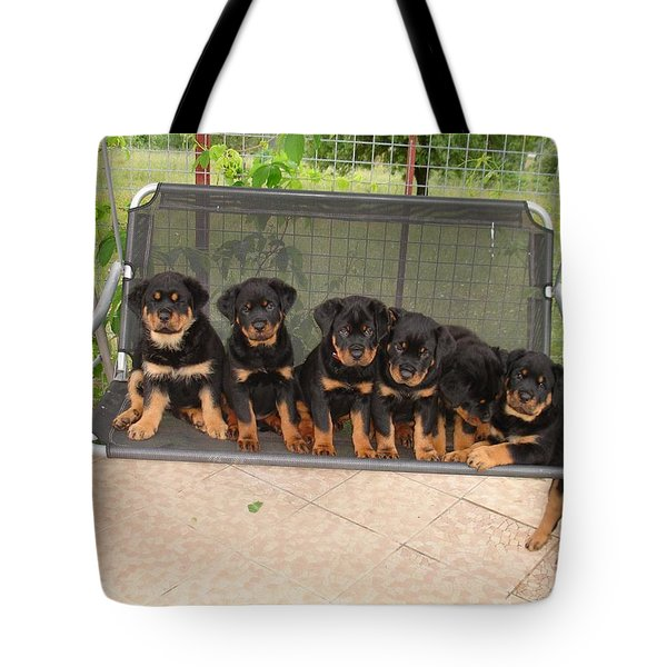 Six Rottweiler Puppies Lined Up On A Swing Tote Bag
