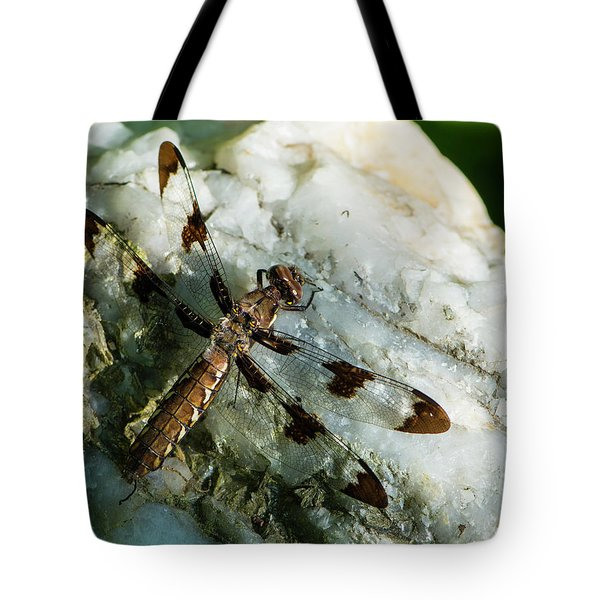 Six Spotted Dragonfly Tote Bag