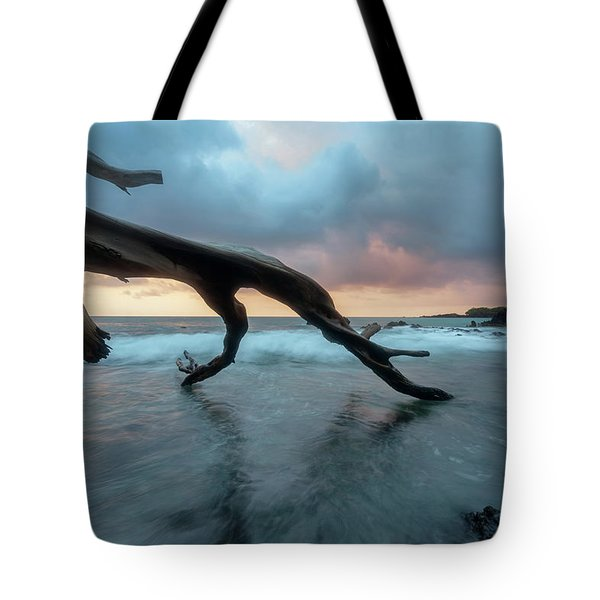Beach 69 Tote Bag