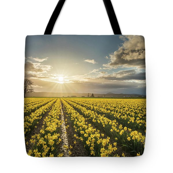 Tote Bag featuring the photograph Skagit Daffodils Bright Sunstar Dusk by Mike Reid