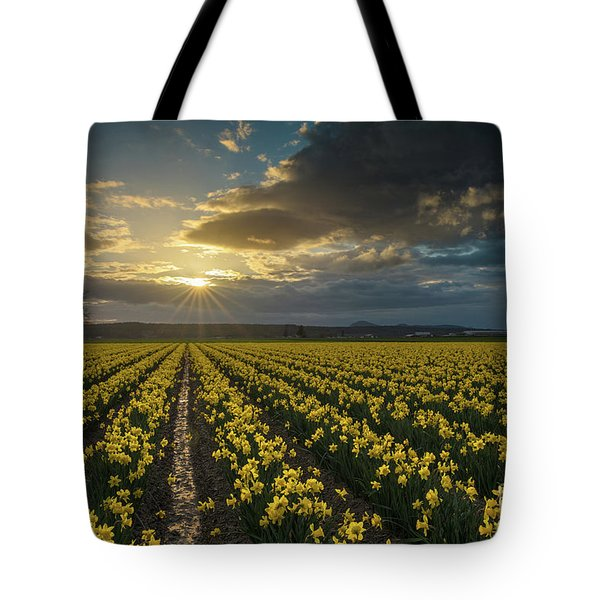 Tote Bag featuring the photograph Skagit Daffodils Golden Sunstar Evening by Mike Reid