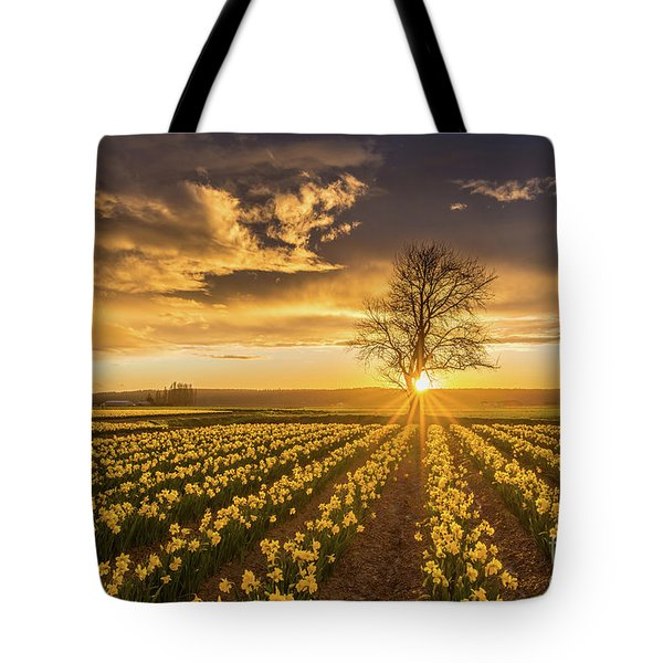 Tote Bag featuring the photograph Skagit Valley Daffodils Sunset by Mike Reid