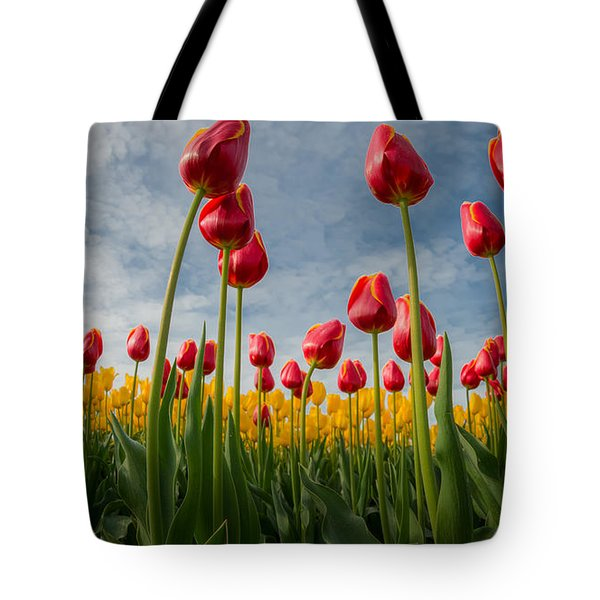 Skagit Valley Spring Joy Tote Bag