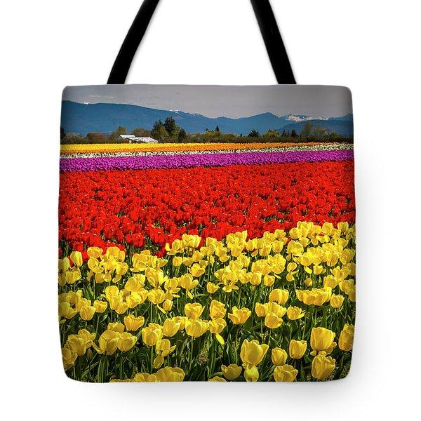 Skagit Valley Tulips  Tote Bag