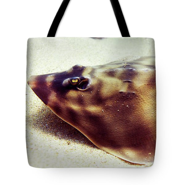 Tote Bag featuring the photograph Skate by Anthony Jones