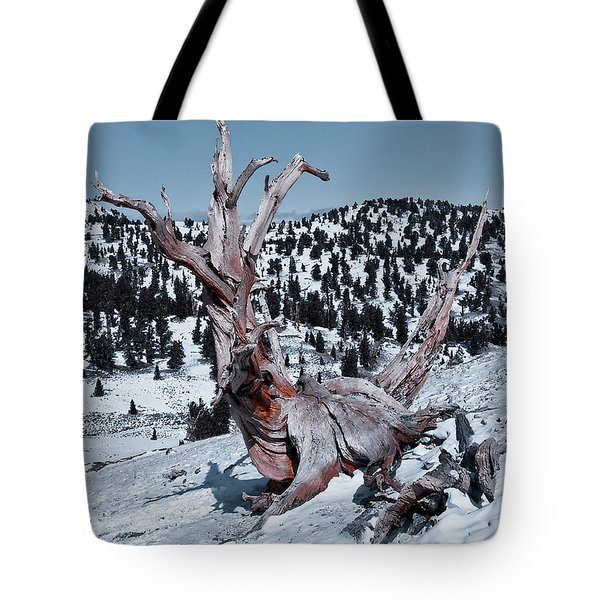 Tote Bag featuring the photograph Skating Pine by Mae Wertz