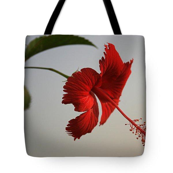 Skc 0450 Vibrant Hibiscus Tote Bag