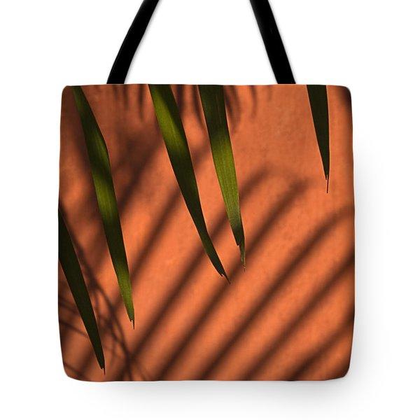 Skc 5521 Stripes Tote Bag by Sunil Kapadia