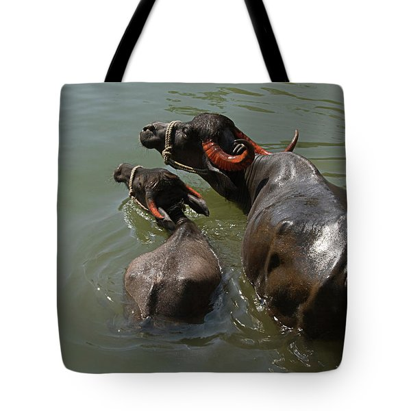 Skc 5603 The Coolest Way Tote Bag by Sunil Kapadia