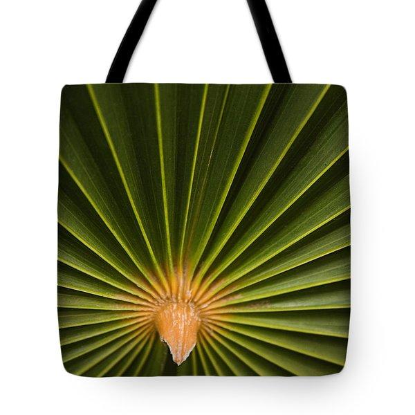 Skc 9959 The Palm Spread Tote Bag by Sunil Kapadia