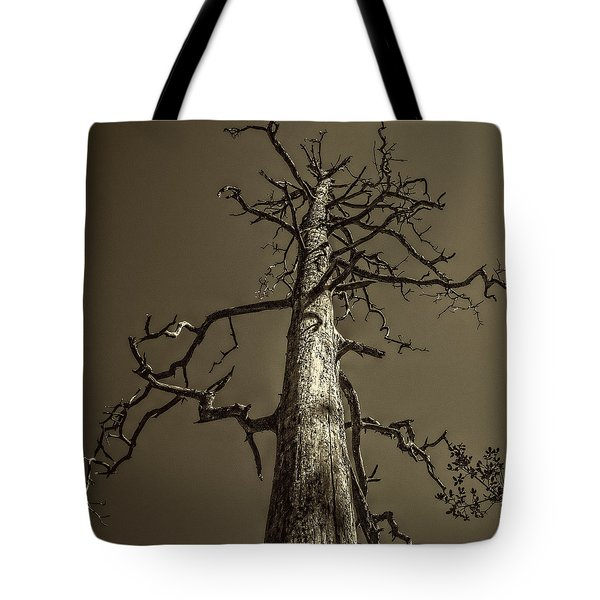 Skeletal Tree Sedona Arizona Tote Bag