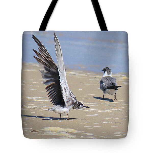 Skiddish Black Tern Tote Bag