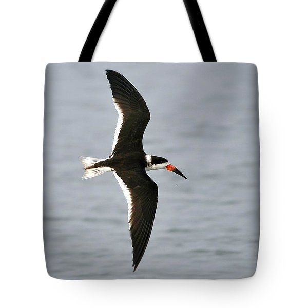 Skimmer In Flight Tote Bag by Al Powell Photography USA