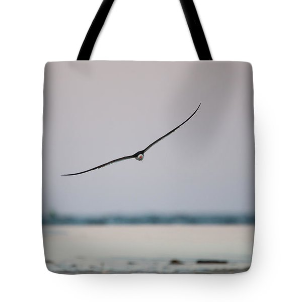 Skimmer In Flight Tote Bag