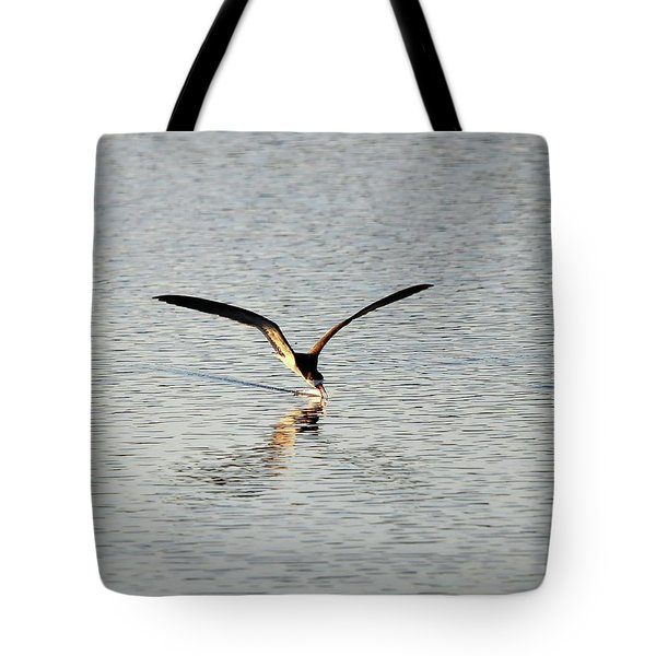 Skimmer Skimming Tote Bag by Al Powell Photography USA